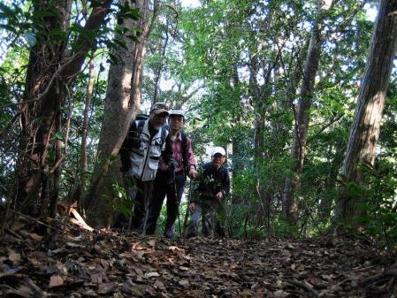 鹿嵐山 046