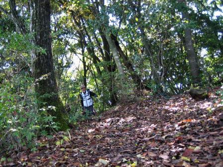 鹿嵐山 064