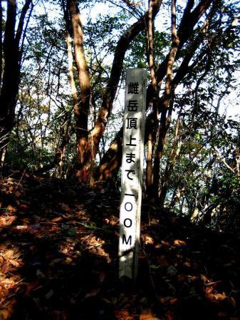 鹿嵐山 060
