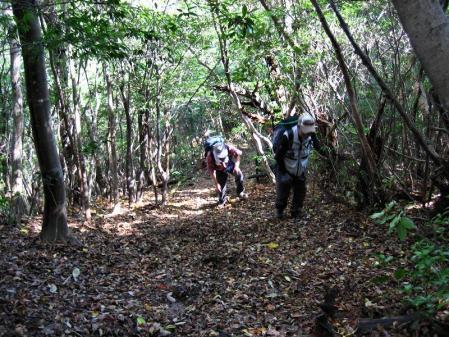 鹿嵐山 097