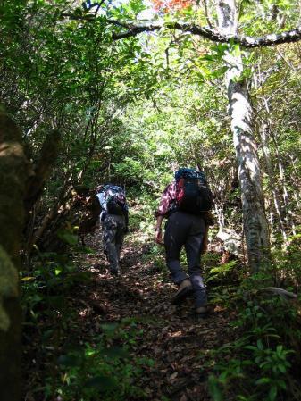 鹿嵐山 091
