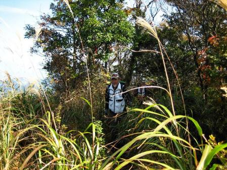 鹿嵐山 110