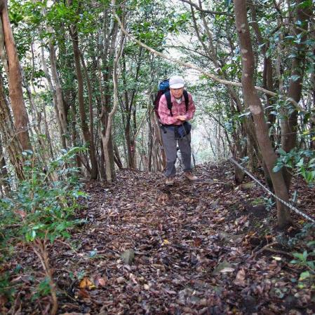 鹿嵐山 158