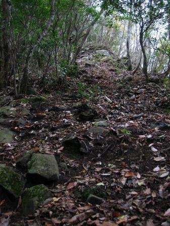 鹿嵐山 178