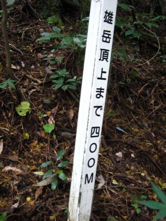 鹿嵐山 197