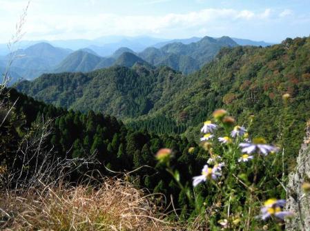 鹿嵐山 287