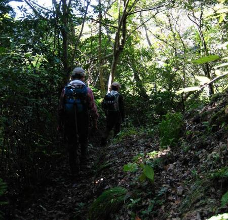 鹿嵐山 293