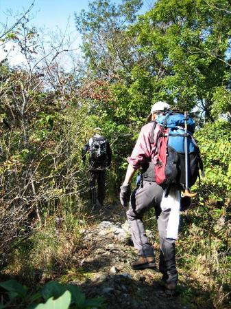 鹿嵐山 290