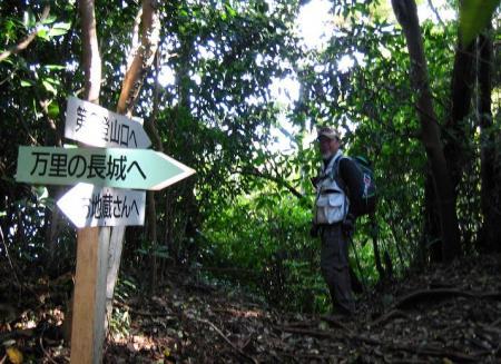 鹿嵐山 301
