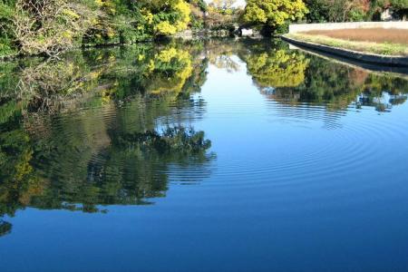 柳川の朝 004