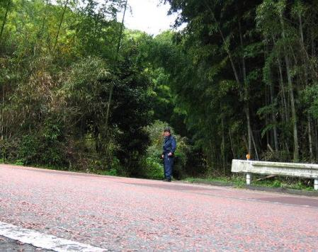 清水の山路歩き 006