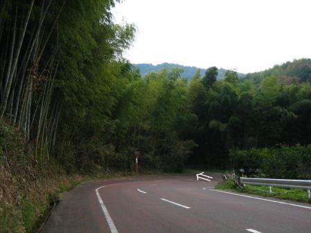 清水の山路歩き 005