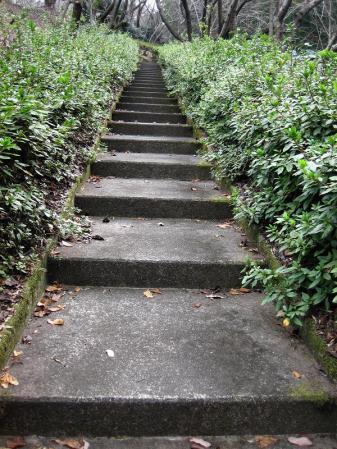 清水の山路歩き 125