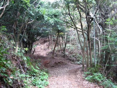 清水の山路歩き 170