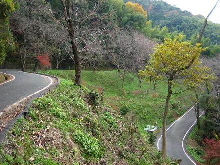 清水の山路歩き 162