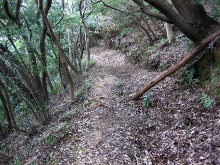 清水の山路歩き 271