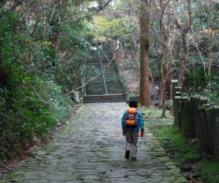 清水の山路歩き 289