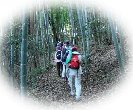 高良山ウォーキング 103