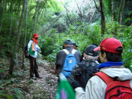 高良山ウォーキング 148