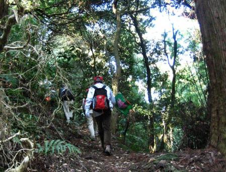 高良山ウォーキング 153