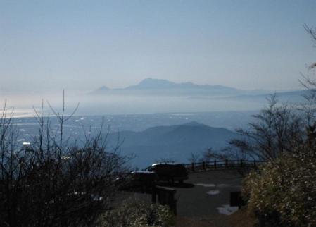天山 コクラン植え 076