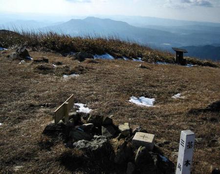 天山 コクラン植え 234