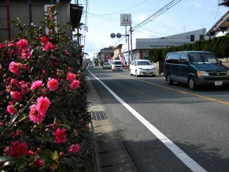 柳川への路 061