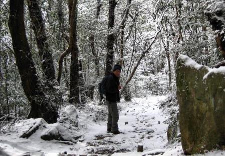 小岱山の雪 191