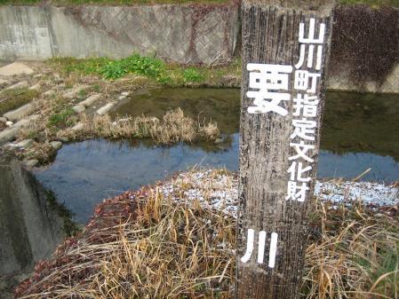 要川とお牧山 020
