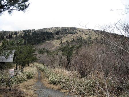 天山の樹氷 057