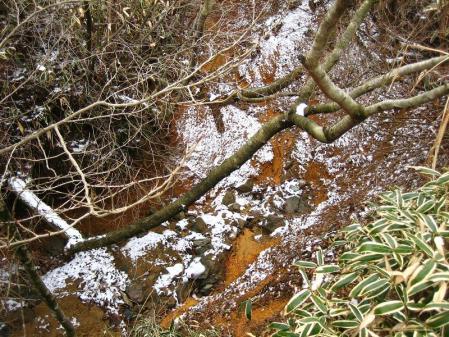 天山の樹氷 060