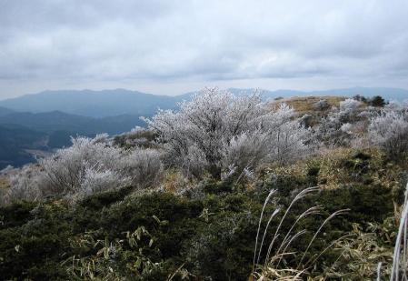 天山の樹氷 122