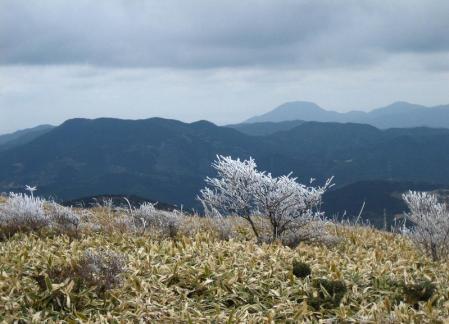 天山の樹氷 145