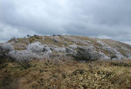 天山の樹氷 134