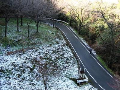 春 運動公園 清水 石丸 066