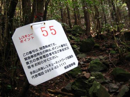 急が岳 038
