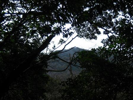 急が岳 070