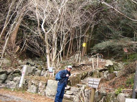 多良岳 マンサク 001