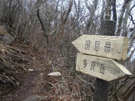 多良岳 マンサク 080