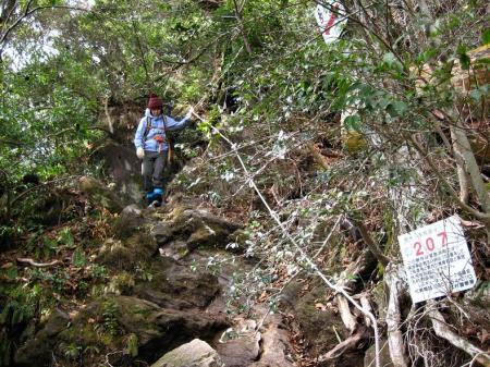 多良岳 マンサク 076