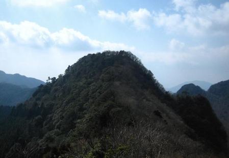 多良岳 マンサク 112