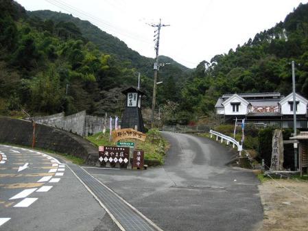 井原山ホソバナ 001