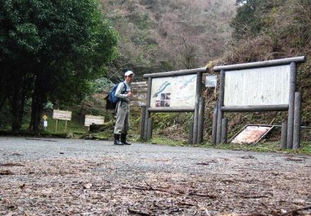 井原山ホソバナ 029