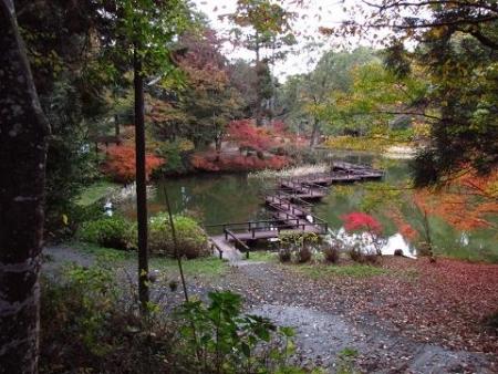 麻生池2 065