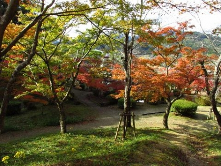西渓公園 063