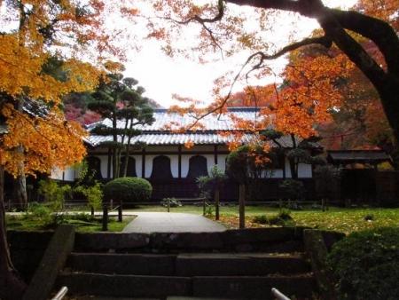 本坊庭園紅葉 003