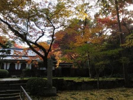 本坊庭園紅葉 017
