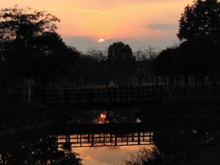 夕陽 030