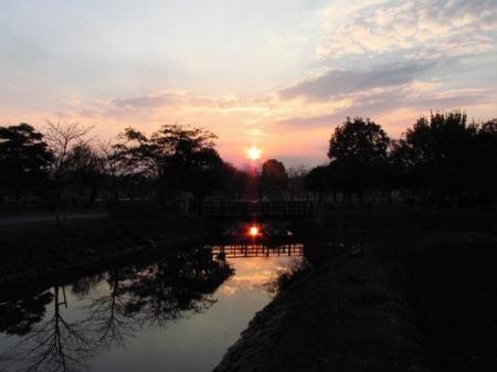 夕陽 021