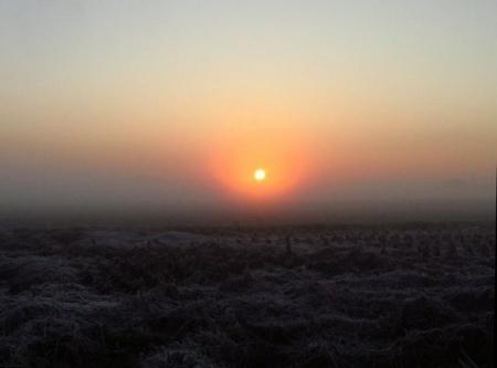 朝日が昇る 009